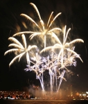 gold-palm-purple-fireworks