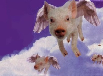 flying_pigs_flipped